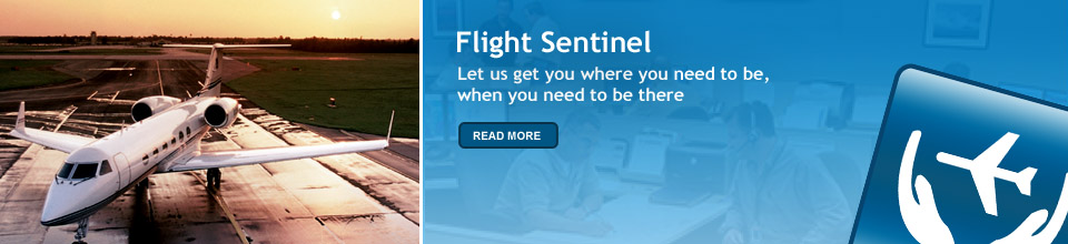 Flight Sentinel Services Banner